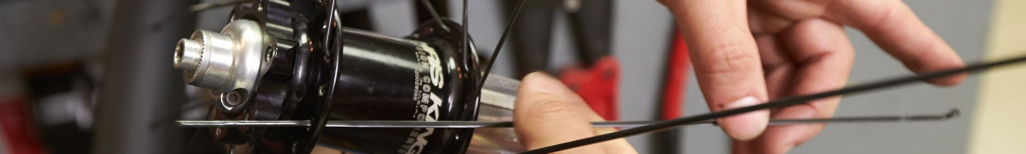 Eugene Bike Wheel Building Service